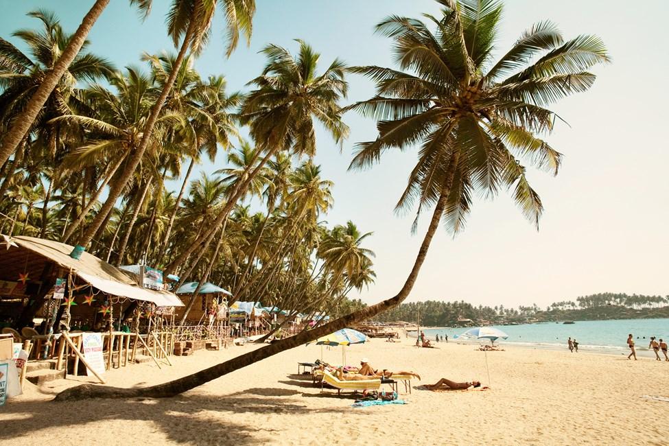 Sør-Goa