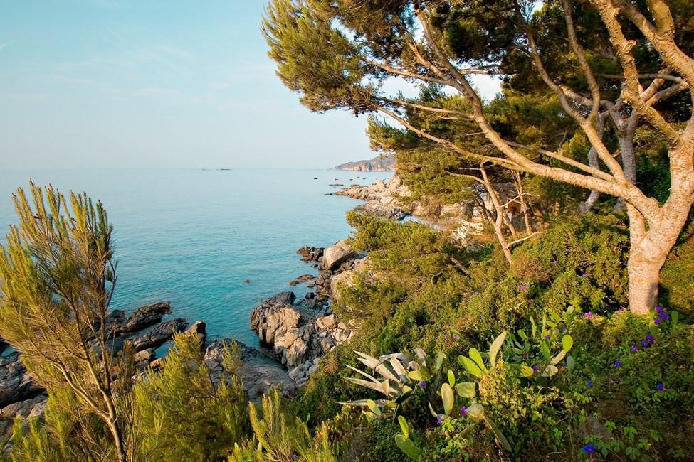 Llafranc, nær Calella