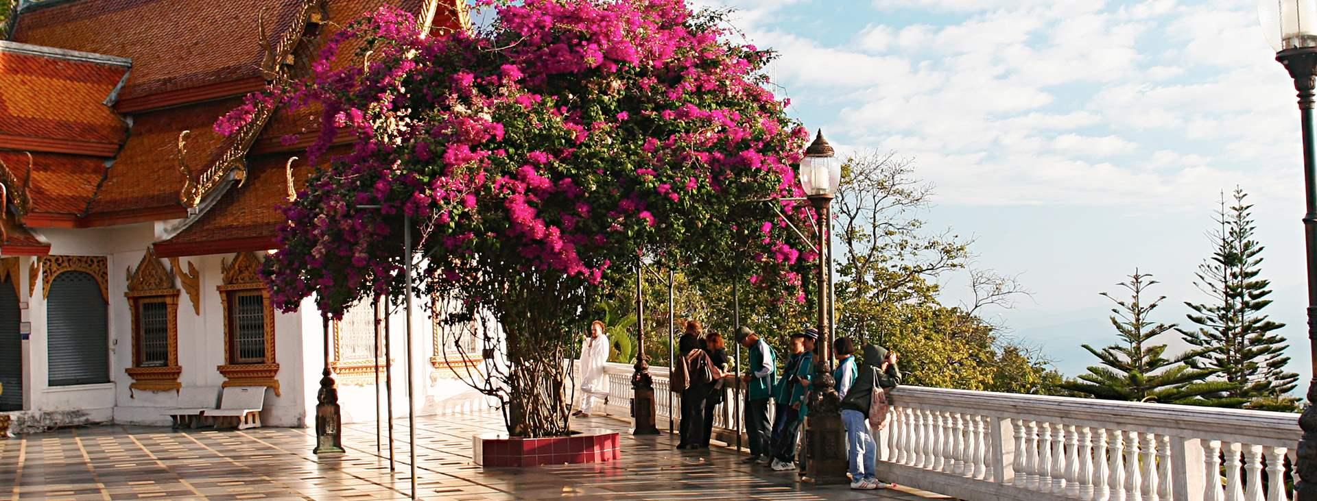 Bestill en reise med Ving til Nord-Thailand