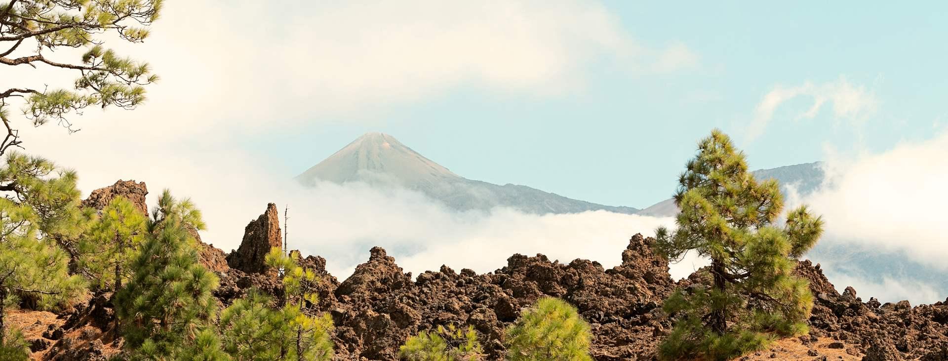 Bestill din rise til Tenerife med Ving