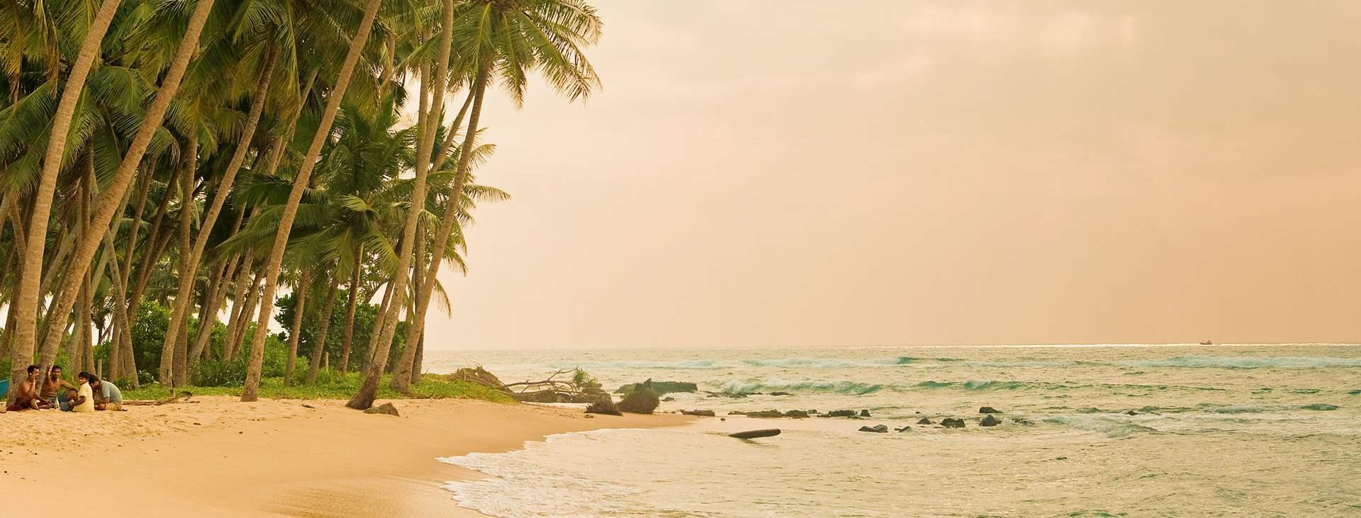 Bestill en reise med Ving til Sri Lanka