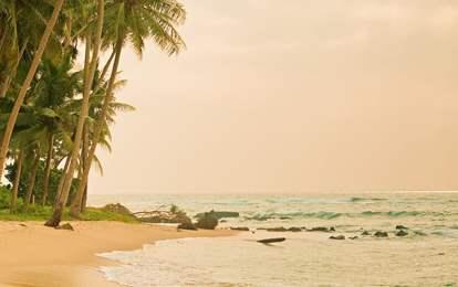 Velsete Sri Lanka - finn reise til Sri Lanka her   Ving QB-99