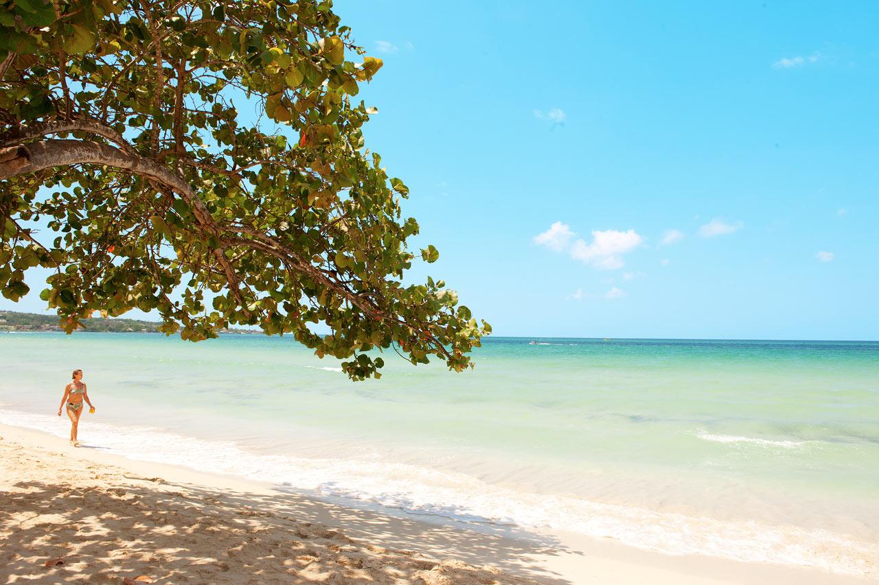7-netters cruise i vestlige Karibia - Jamaica
