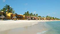 All Inclusive på hotell Tamarijn Aruba All Inclusive.
