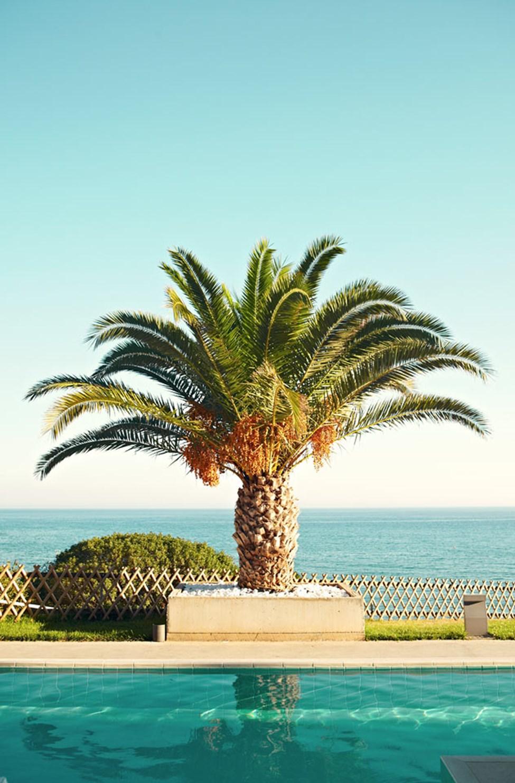 Fra bassengene på Ocean Beach Club har du vakker utsikt over havet.