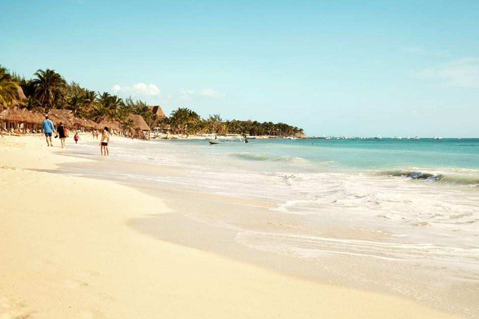 Playa del Carmen kan skryte av fantastiske korallstrender