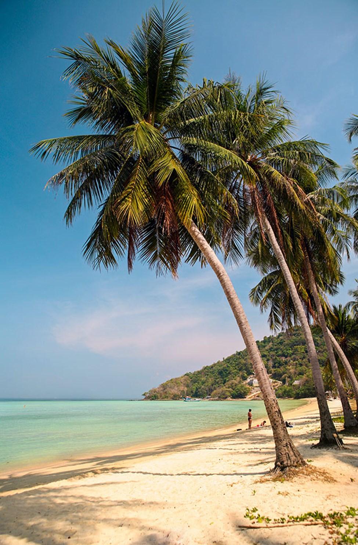 Strand ved Phi Phi Village