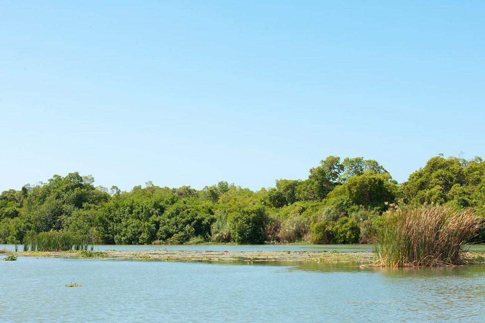 Black River - en populær utflukt fra Negril