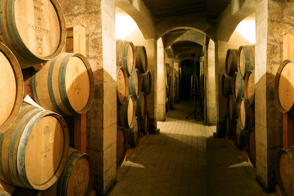 Meridiana Wine Estate