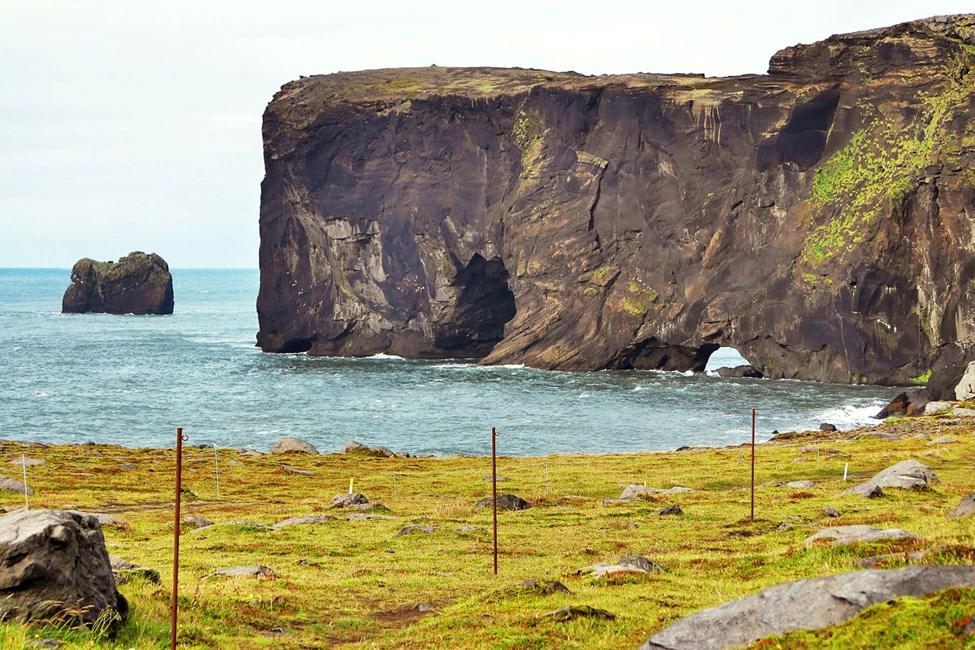 Fra Reykjavik kan du ta herlige hel- og halvdagsutflukter, f.eks. til klippehalvøya Dyrhólaey.