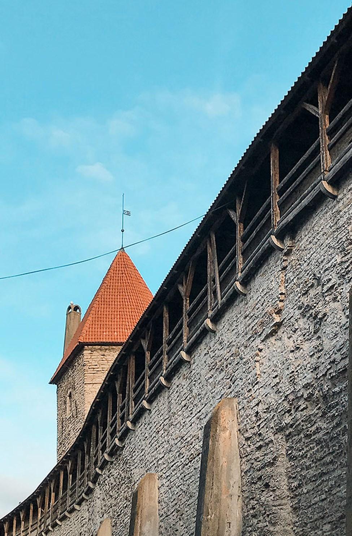 Bymuren rundt gamlebyen i Tallinn