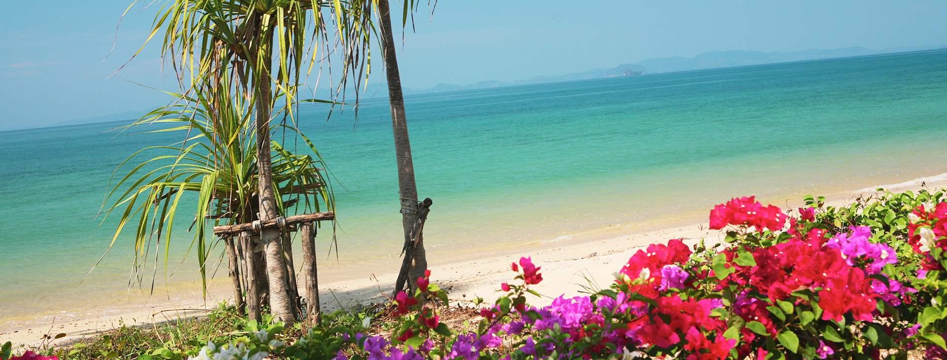 Bestill en reise med Ving til Klong Muang Beach i Thailand