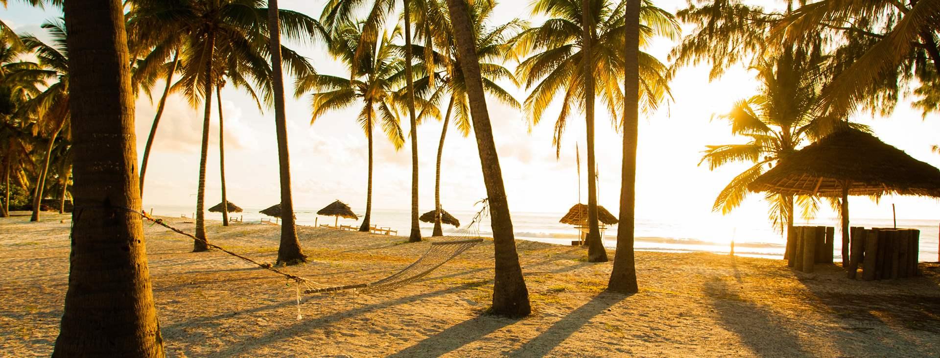 Zanzibars hvite strender og spennende historie lokker alle solelskere. Bestill en reise med Ving til øya Zanzibar i Tanzania