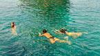 Snorklesafari – et undervannseventyr – kan bestilles hjemmefra