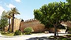 Opplev mer av Mallorca – kan bestilles hjemmefra