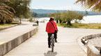 Biking: Olive Route